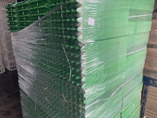 2500 Vỉ trứng 30 xanh - Nhựa BÌnh Thuận tại Hà Nội