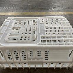 Lồng gà CP Nhựa Bình Thuận - Chụp ngang đậy nắp