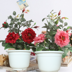Chậu hoa giả sứ Nhựa Bình Thuận tại Hà Nội