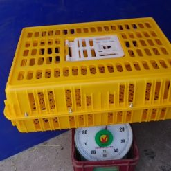 Lồng gà TQ - 5kg - Nhựa Nguyên Sinh - Nhựa Bình Thuận tại Hà Nội